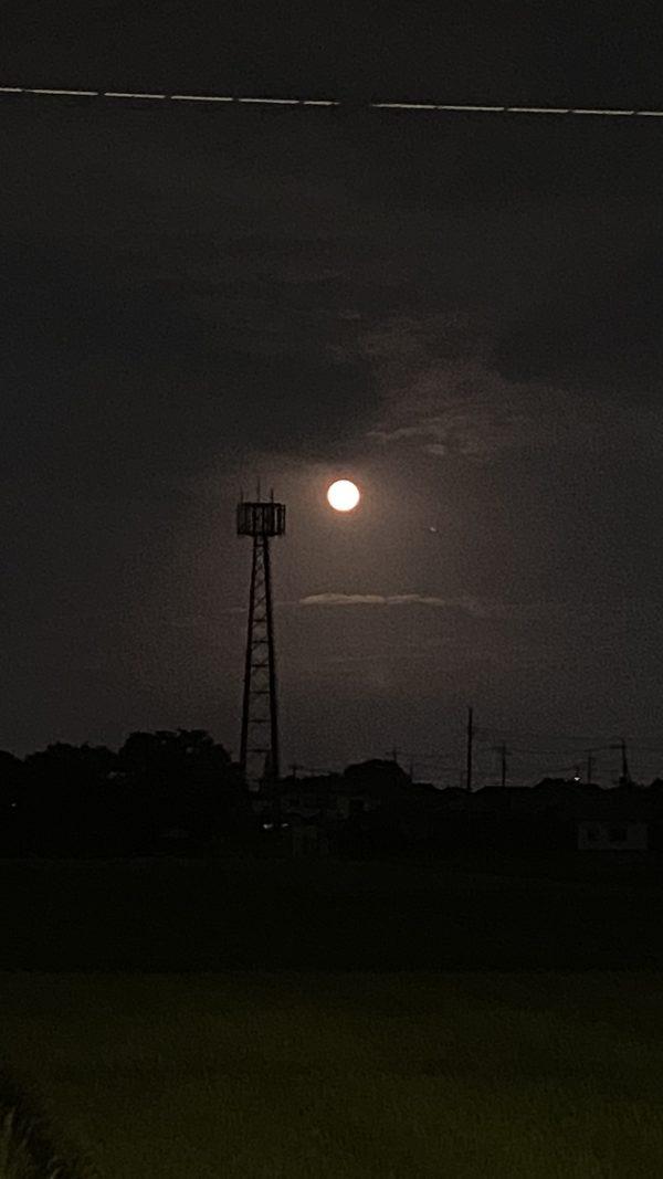 中秋の名月サムネイル