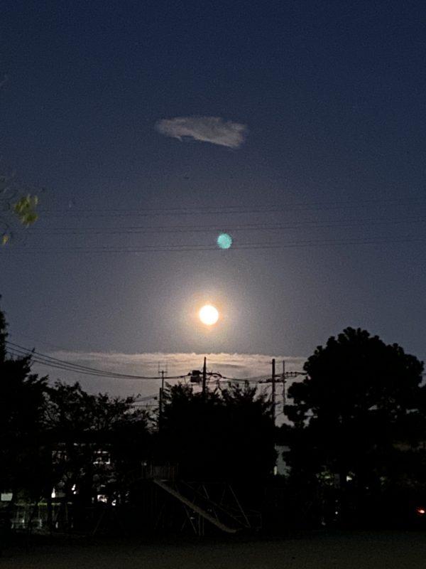 今晩も月がきれいでしたねサムネイル